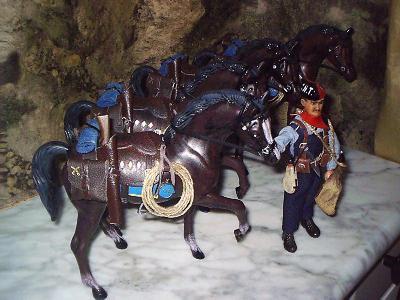 20100205195251-caballos-para-el-septimo-de-jordi-002.jpg